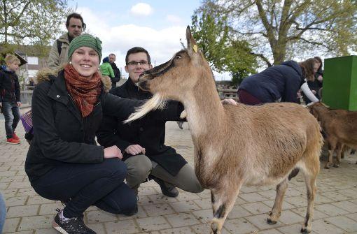 Viele Besucher nehmen Abschied von den Tieren.  Foto: Andreas Rosar Fotoagentur-Stuttg