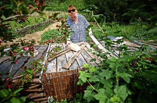 Die Stuttgarterin hat die Angebote vieler Gartenfreunde zur Umsiedelung von Eidechsen gebündelt. In ihrem großen Naturgarten in Rohrbronn bietet sie selbst bereits diversen Tierarten Unterschlupf.  Foto: Gottfried Stoppel