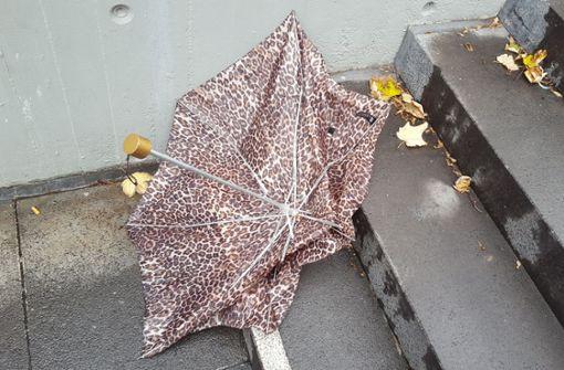 Am Mittwoch könnte sich ein Regenschirm in Stuttgart wieder lohnen Foto: Lichtgut/Max Kovalenko