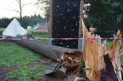 Jugendlicher aus Herrenberg von Baum erschlagen
