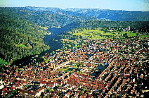 Eine Frohnatur im Schwarzwald
