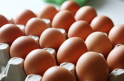 Eier wegen Salmonellen zurückgerufen