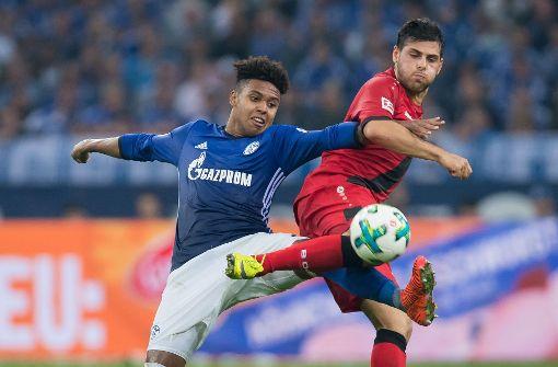 Schalke nur Unentschieden gegen Leverkusen