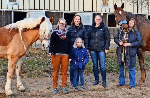 Pferdestärken im Industriegebiet