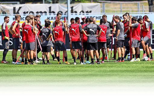 Das Rennen um die Kaderplätze beim VfB
