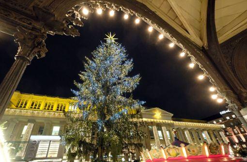 Weihnachtsbaum wird auf dem Schlossplatz aufgestellt