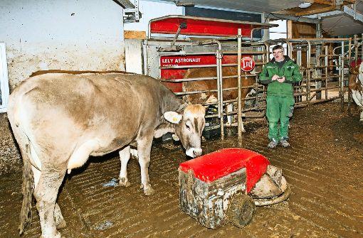 Blick in den Stall: der Mistschieber wird per Smartphone von Bauer Schnerring um die Kuh herum manövriert. Foto: privat