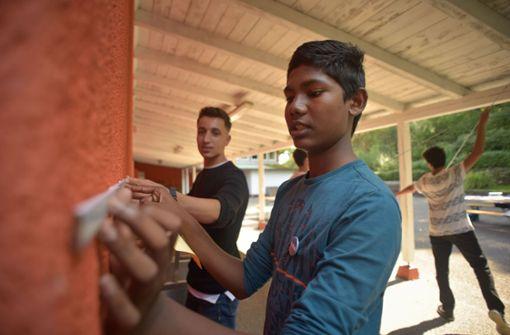 Im Aktivpark Bergheide des Caritasverbands sind in dieser Woche 25 Jugendliche schon fleißig. Foto: Lichtgut/Max Kovalenko