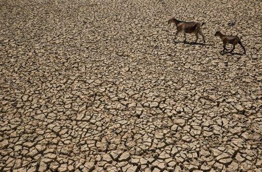 """Angst vor dem """"Klimamonster"""""""
