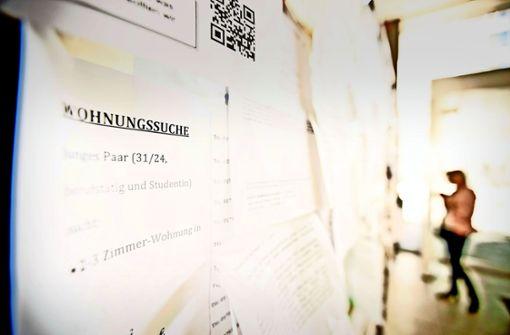 Der Platz am Schwarzen Brett der Universität Stuttgart füllt sich zurzeit wieder mit Wohnungssuchanzeigen. Foto: Leif Piechowski