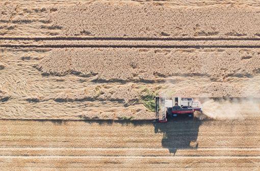 Das Risiko des Landwirts