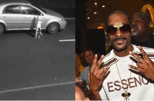 Snoop Dogg will ausgesetzten Hund adoptieren