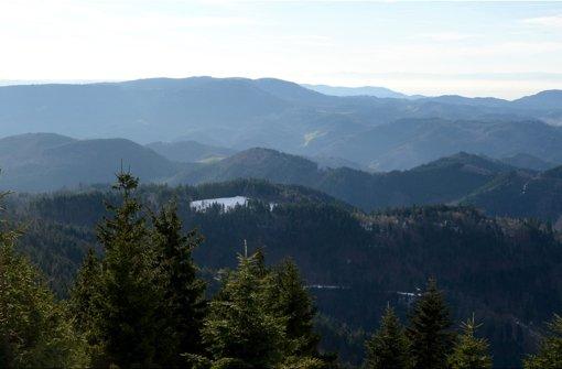 Weiterer Tierpark im Schwarzwald  geplant
