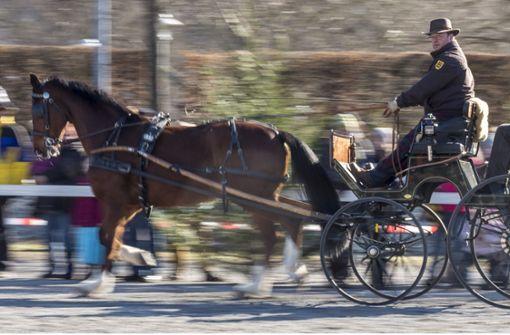 Beim Pferdemarkt gab es auch eine Kutschenvorführung. Foto: factum/Weise