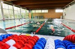 Wasserratte trifft Profischwimmer