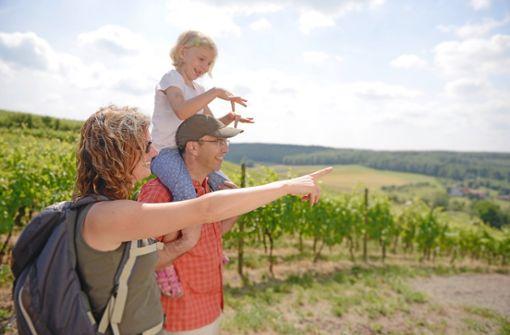 Wanderungen für die ganze Familie  Foto: Kraichgau-Stromberg Tourismus e.V.