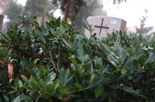 Mehr ungepflegte Gräber – vor allem in Großstädten
