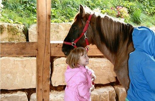 Zunächst beschnuppern sich Kinder und Pferde vorsichtig Foto: Anna-Lena Kümpel