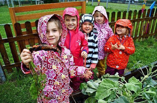 Dass eine Möhre nicht sauber aus der Erde kommt, wissen die Kinder der Kita Wichtelpark inzwischen nur zu gut. Foto: Leonie Schüler