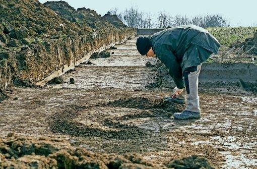 Die Archäologen mussten  nicht tief graben. Schon bei einer Tiefe von 30 Zentimeter sind sie auf erste Spuren einer antiken Siedlung gestoßen. Foto: factum/Bach