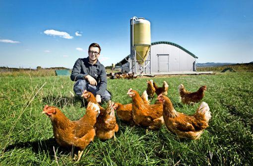 Der Herr der glücklichen Hühner