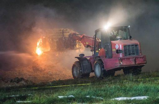 120 Rinder aus brennendem Stall gerettet