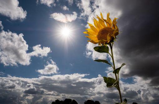 Nach der Hitze wird es wieder etwas kühler und wechselhafter (Symbolbild). Foto: dpa