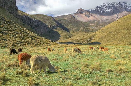 Ecuador – Reise zum Mittelpunkt der Welt