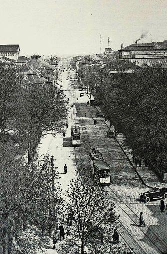 Blick auf die damalige Neckarstraße im Jahr 1925. Rechts hinter den Bäumen verdeckt ist das Wilhelmspalais.  Foto: Stuttgart-Album