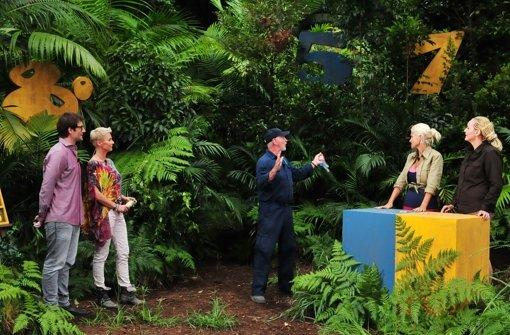 """Sophia Wollersheim (2.v.r.) kämpft in der Dschungelprüfung  für das """"Base Camp"""" gegen """"Snake Rockerin"""" Helena Fürst (r.) um die begehrten Sterne. Foto: RTL / Stefan Menne"""