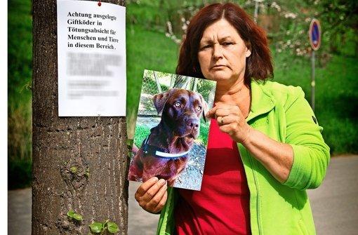 Edith Klenk will den Tierquäler finden, der ihre Bella vergiftet hat Foto: Lichtgut/Horst Rudel