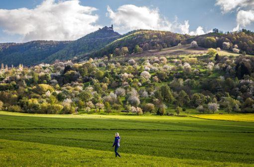 Die fünf schönsten Wanderungen im Frühjahr