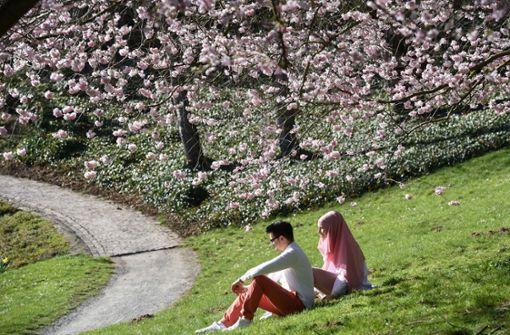 Auf den Frühling folgt Abkühlung