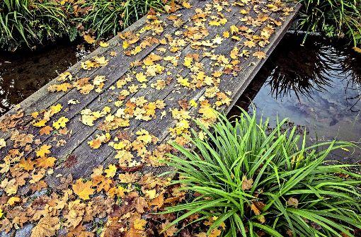 Der kühle Hauch des Herbstes