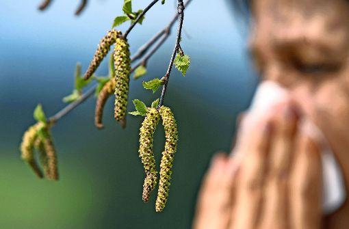 Pollensaison bringt Bindehautentzündung