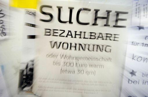 Stuttgarterin vermietet ihre Couch an Erstis