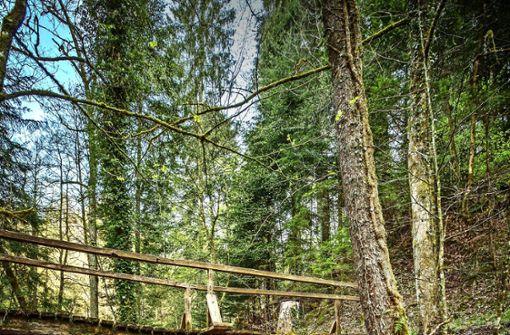 Das Ziel: Nachhaltig die Natur erleben