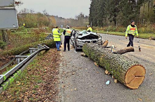 Baum stürzt auf Auto –   zwei Menschen sterben