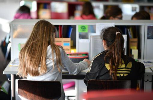 Ein Foto aus dem Unterricht an einer Gemeinschaftsschule. Foto: dpa