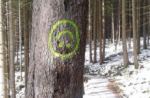 Unbekannte sprühen mehr als 100 Emojis an Bäume