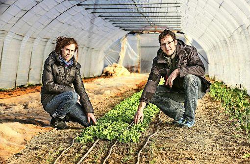 Solidarität zwischen Landwirt und Verbraucher