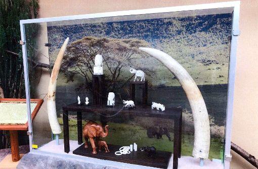 Diebe haben aus dem Zoo Magdeburg zwei Elfenbeinstoßzähne gestohlen. Foto: Polizei Sachsen-Anhalt