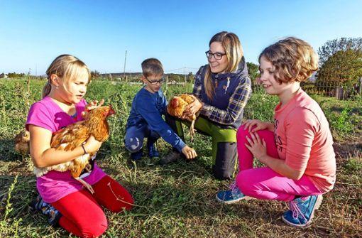 Der Schulbauernhof braucht dringend mehr Sponsoren