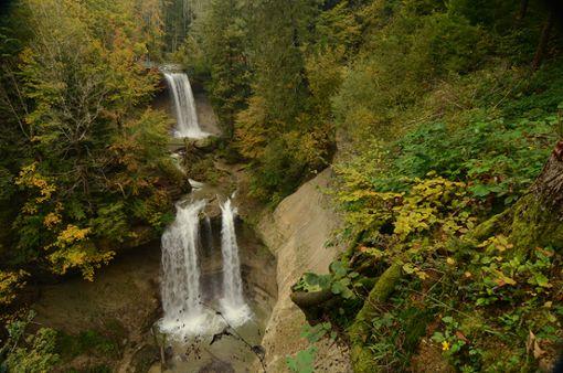 Scheidegger Wasserfälle im Allgäu  Foto: Scheidegg-Tourismus
