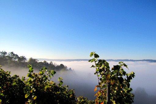 Sonnenaufgang im Remstal: der Schurwald. Foto: Leserfotograf remstal-knipser