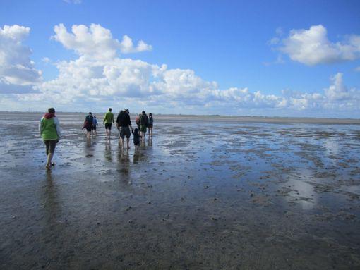 Die Nordsee: Wellen, Wind und Wassersport