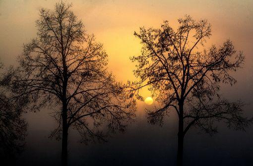 Etwas Sonne, ganz viel Wolken: In Stuttgart und Region wird das Wetter am Freitag recht trübe. Foto: dpa