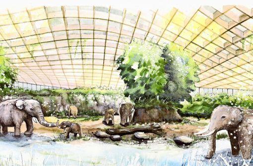 Die Elefantenwelt wird frühestens 2025 fertig