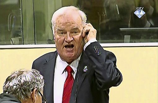 Lebenslange Haft für Ratko Mladic
