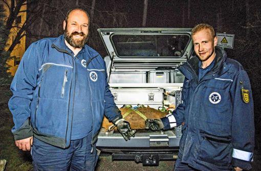 Bombe lag 40 Zentimeter unter der Erde